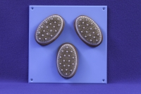 Activity Wall Panel Brushes